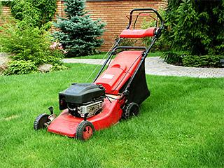 Landscape Maintenance Excelsior Minnesota MN